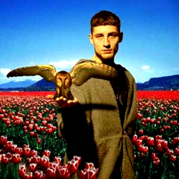 Luke Vibert And Owl